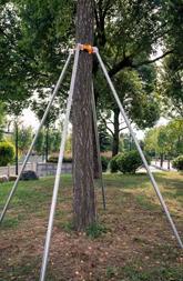 直径4.8cm长6m四脚镀锌钢管支撑架